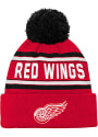 Detroit Red Wings Youth Wordmark Knit Hat - Red