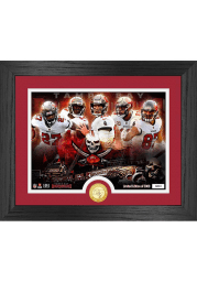 Tampa Bay Buccaneers Team Force Coin Photo Mint Plaque