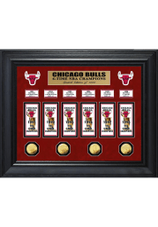 Chicago Bulls Six Time NBA Champions Deluxe Gold Coin and Banner Collection Plaque