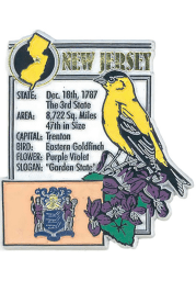 New Jersey State Facts Magnet