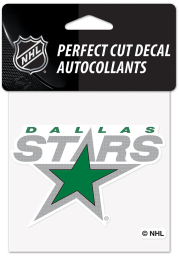 Dallas Stars Reverse Retro Logo Auto Decal - Green