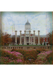 Missouri Tigers Jesse Hall Stone Tile Coaster