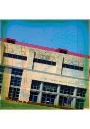 Kansas Jayhawks Allen Fieldhouse Stone Tile Coaster