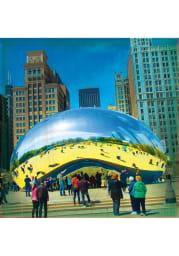 Chicago Bean Stone Tile Coaster