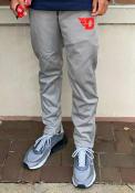 Dayton Flyers Champion Field Day Fleece Pants - Grey