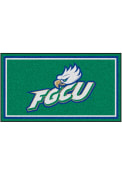 Florida Gulf Coast Eagles 3x5 Plush Interior Rug