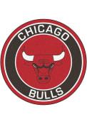 Chicago Bulls 27 Roundel Interior Rug
