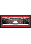 Chicago Blackhawks United Center Side View Deluxe Framed Posters
