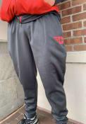 Nike Dayton Flyers Grey Therma Pants