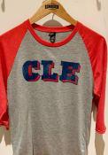 Cleveland Grey Block Raglan 3/4 Sleeve T Shirt