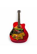 Chicago Blackhawks Acoustic Collectible Guitar
