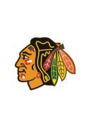 Chicago Blackhawks Team Logo Pin
