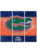 Florida Gators 3 Piece Border Canvas Wall Art