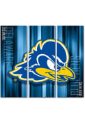 Delaware Fightin' Blue Hens 3 Piece Rush Canvas Wall Art