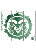 Colorado State Rams 3 Piece Watercolor Canvas Wall Art